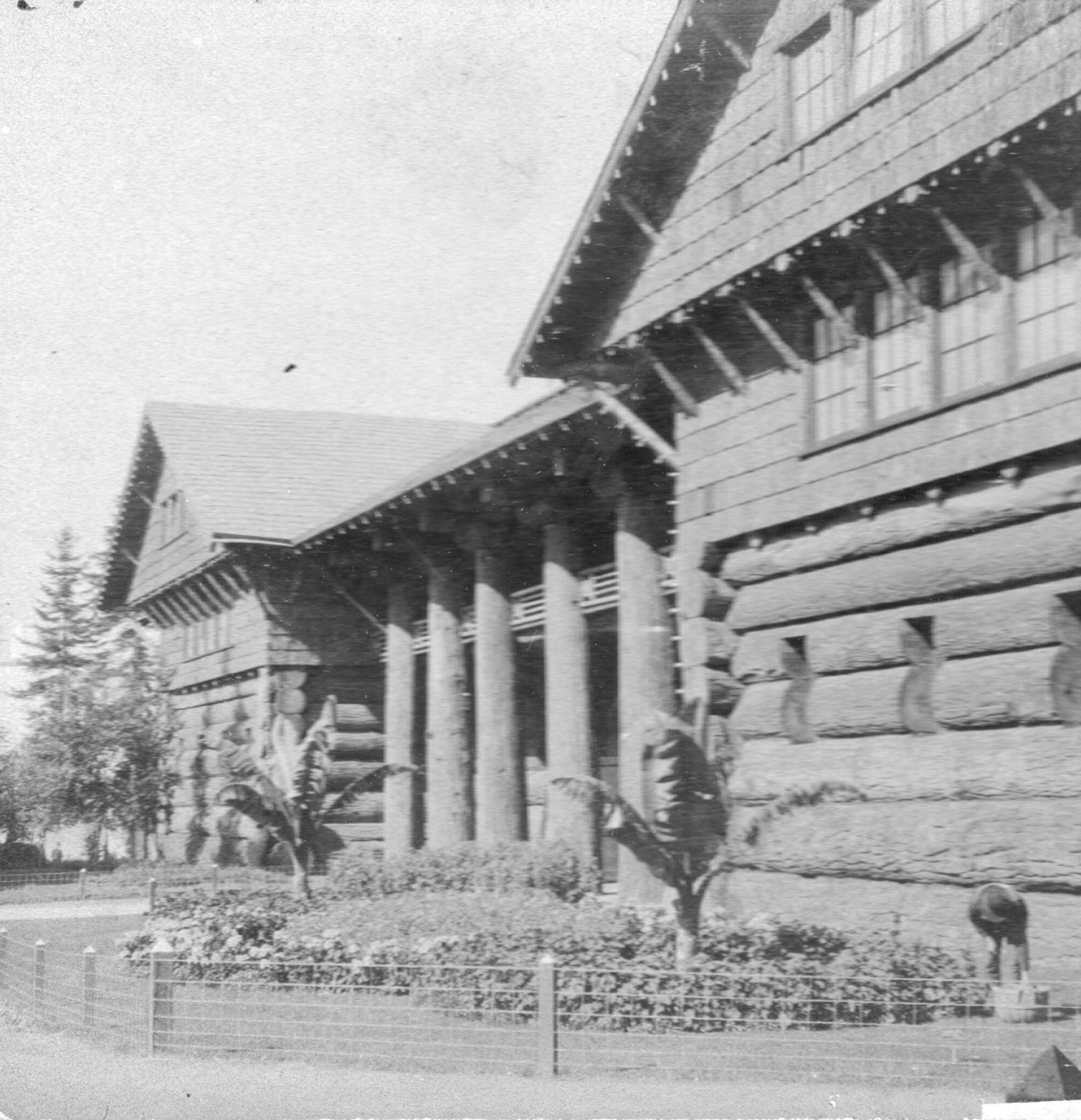 Downtown S Foreman Clark Building To Become 124: The Giant Log House, Lewis And Clark Exposition, 1905