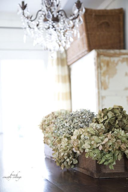Simple Hydrangeas (FRENCH COUNTRY COTTAGE)