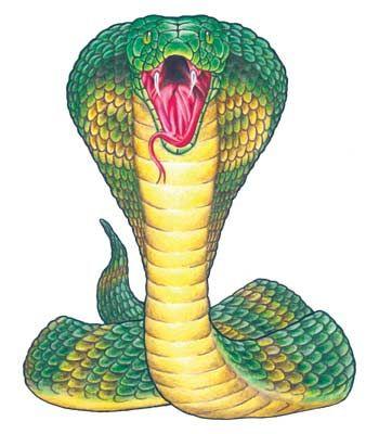 Motifs Pour Tatouage Tatouage De Cobra Tatouages Serpent