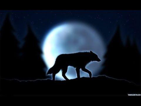 Волк отомстил, но отомстил без крови.