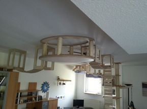 This guy designs and builds the most AWESOME cat jungles (Gallery)