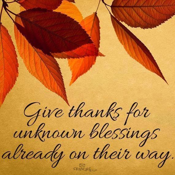 Hope everyone is enjoying their Thanksgiving.  I have so many things to be thankful for.   My beautiful mom, my son, husband, brother and nephew.   All my wonderful family.    And of course my awesome friends.