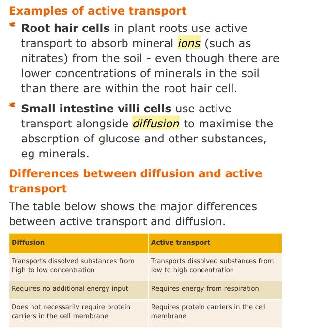 Plant tissues Science Pinterest Plant tissue and Aqa - best of tabla periodica metales no metales metaloides