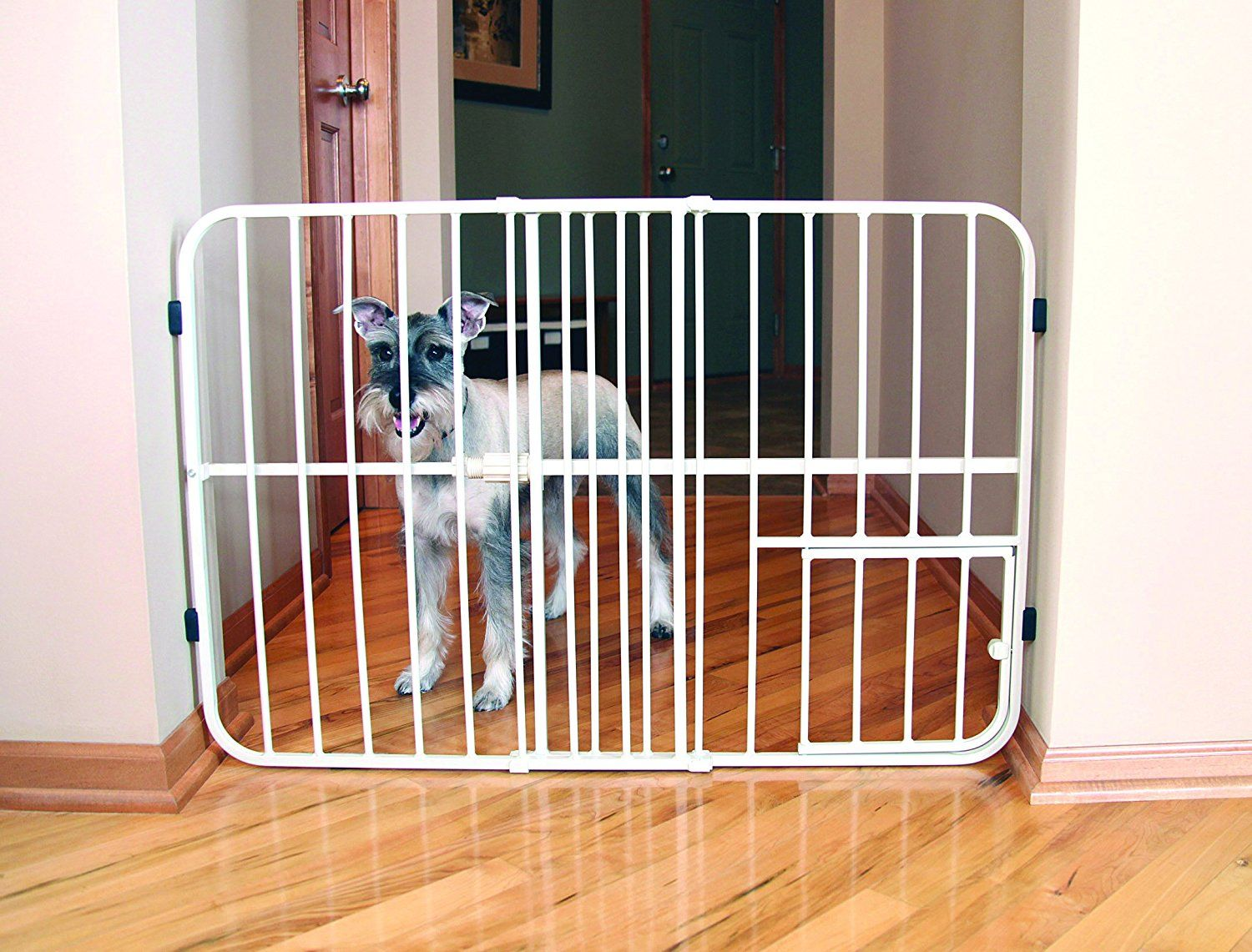 Carlson Tuffy Metal Expandable Pet Gate Check Out The Image By