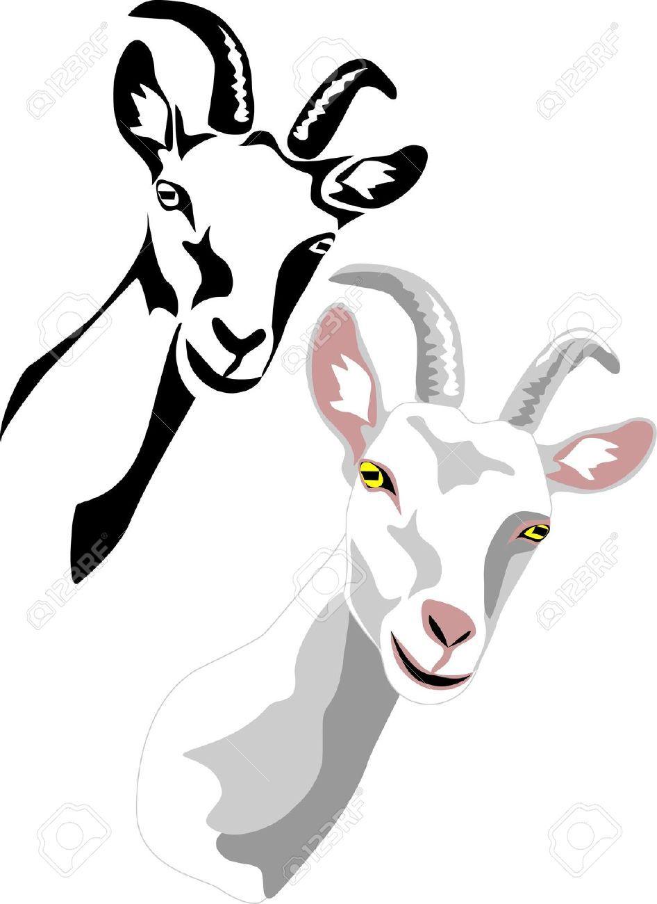 35+ Goat head images clipart ideas
