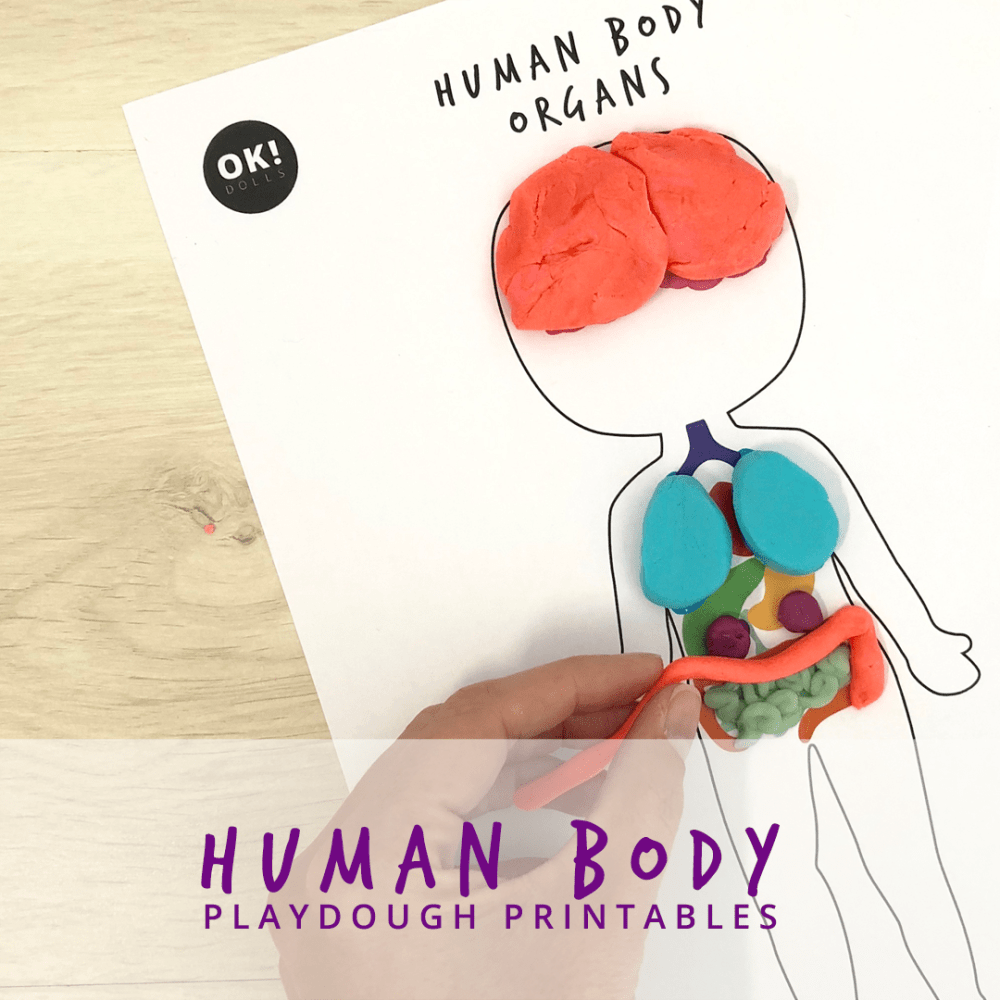 Free Human Body Playdough Printables Human Body Activities Free Human Body Human Body Crafts