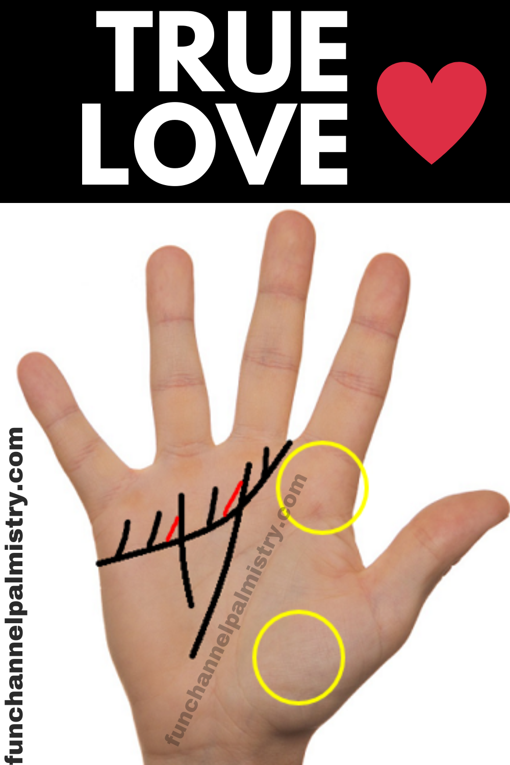 True Love And Happy Marriage Signs In Your Hands Palmistry Palmistry Marriage Signs Love And Marriage