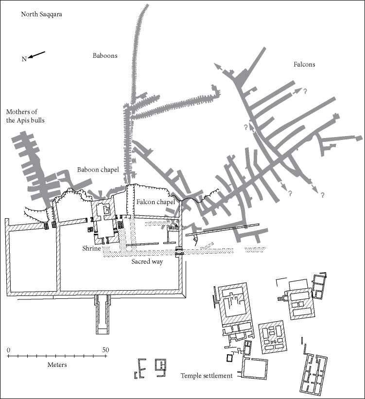 Plan of the Sacred Animal Necropolis at North Saqqara. Source: B. J. ...