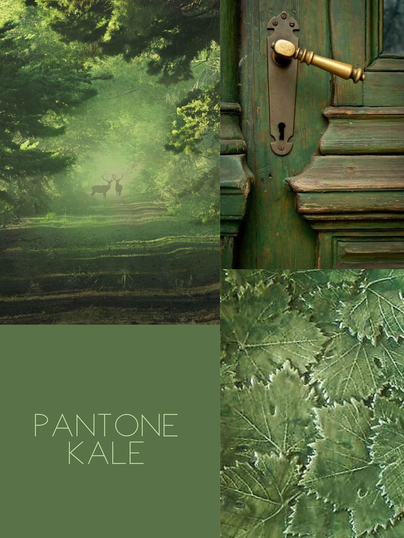 pantone kale color inspiration pinterest farben gr n and wandfarbe. Black Bedroom Furniture Sets. Home Design Ideas