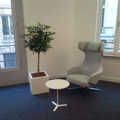 paysagiste d intérieur paris décoration bureaux entreprise open