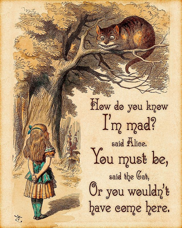 Photo of 'Alice in Wonderland Quote – How Do You Know I'm Mad – Cheshire Cat Quote – 0246' Art Print by ContrastStudios