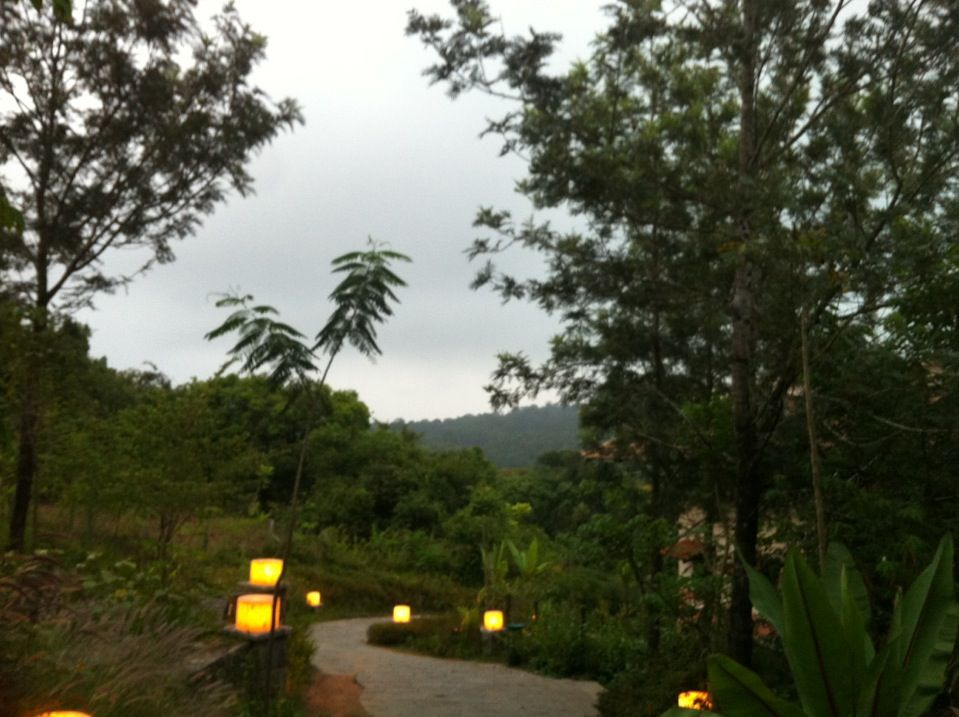 Club Mahindra Madikeri Coorg Places To Visit Places To Travel Best Hotels