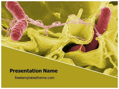 Download free tissue bacteria powerpoint template for your download free tissue bacteria powerpoint template for your powerpoint toneelgroepblik