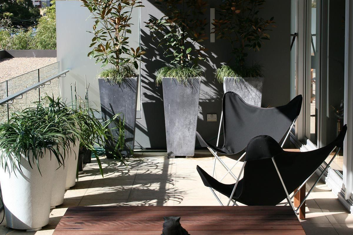 Butterfly Chairs Create A Relaxing Vibe Above Vibrant Danks St @Urban  Balcony #Urbanbalcony