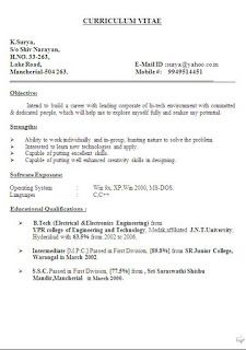 Standard Biodata Format Sample Template Example Ofbeautiful