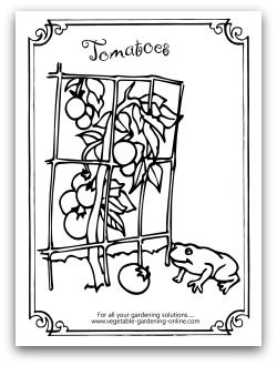 Free Vegetable Garden Coloring Books (With images