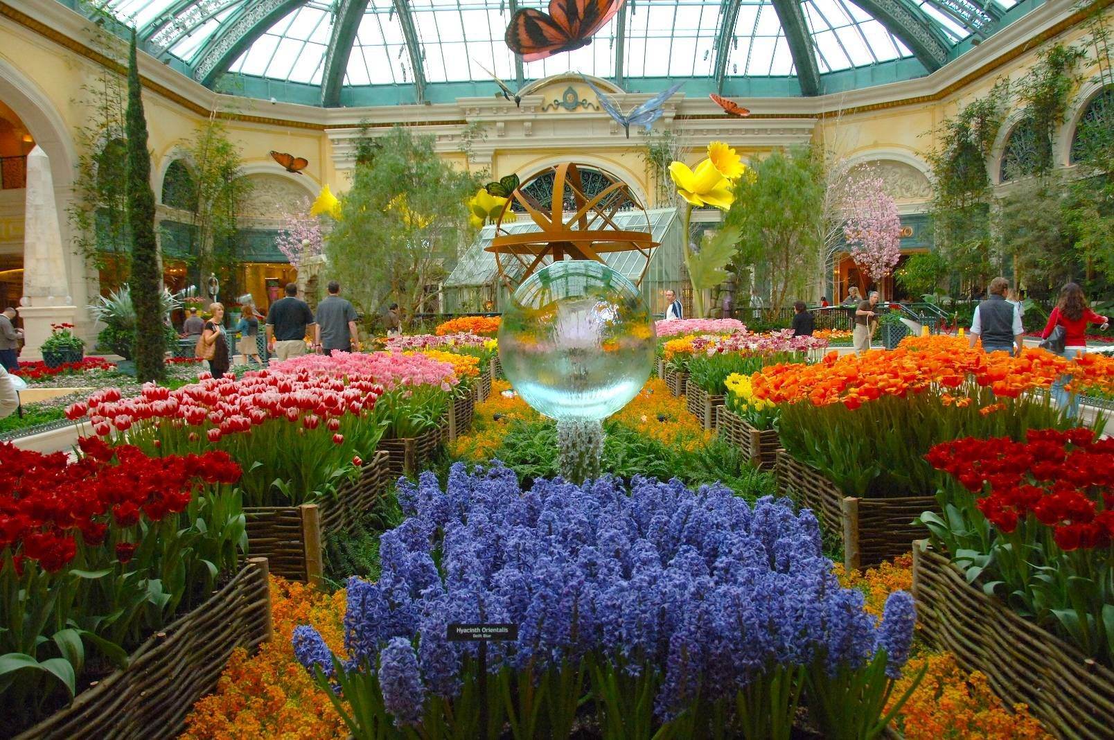 Spring At The Bellagio Las Vegas Garden Zen Pinterest