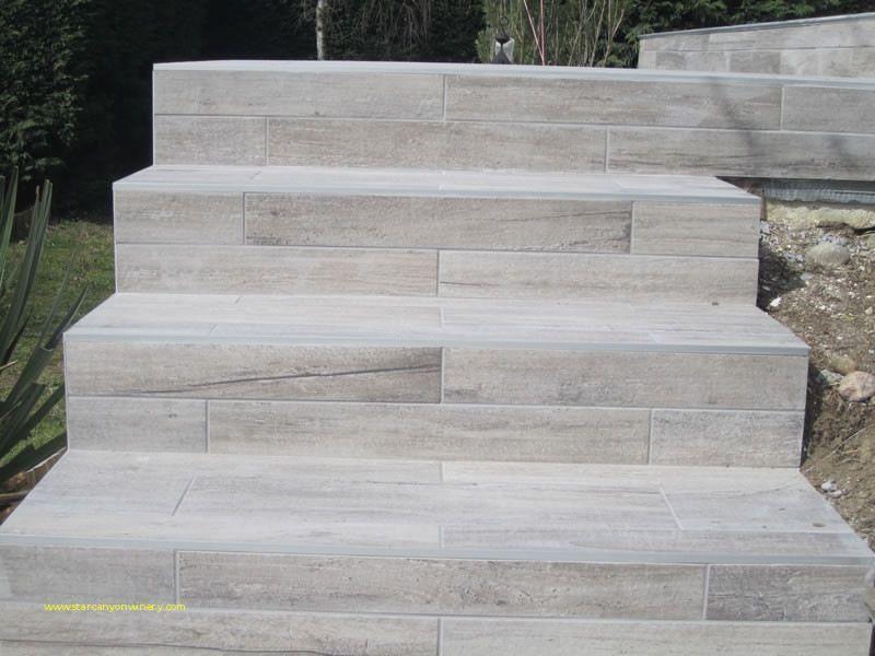 Escalier Recouvert De Carrelage Effet Bois Carrelage Exterieur Carrelage Escalier Exterieur Carrelage Terrasse Exterieur