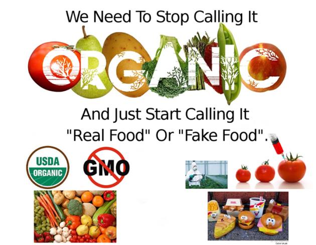 Real Food Vs Fake Food Benefits Of Organic Food Fake Food Real Food Recipes