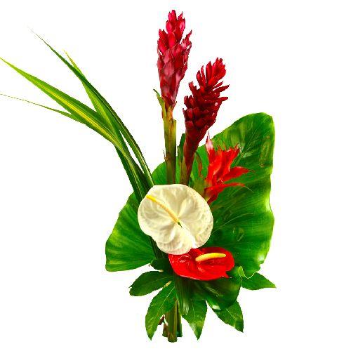Amour est un merveilleux bouquet exotique tout en hauteur for Bouquet exotique
