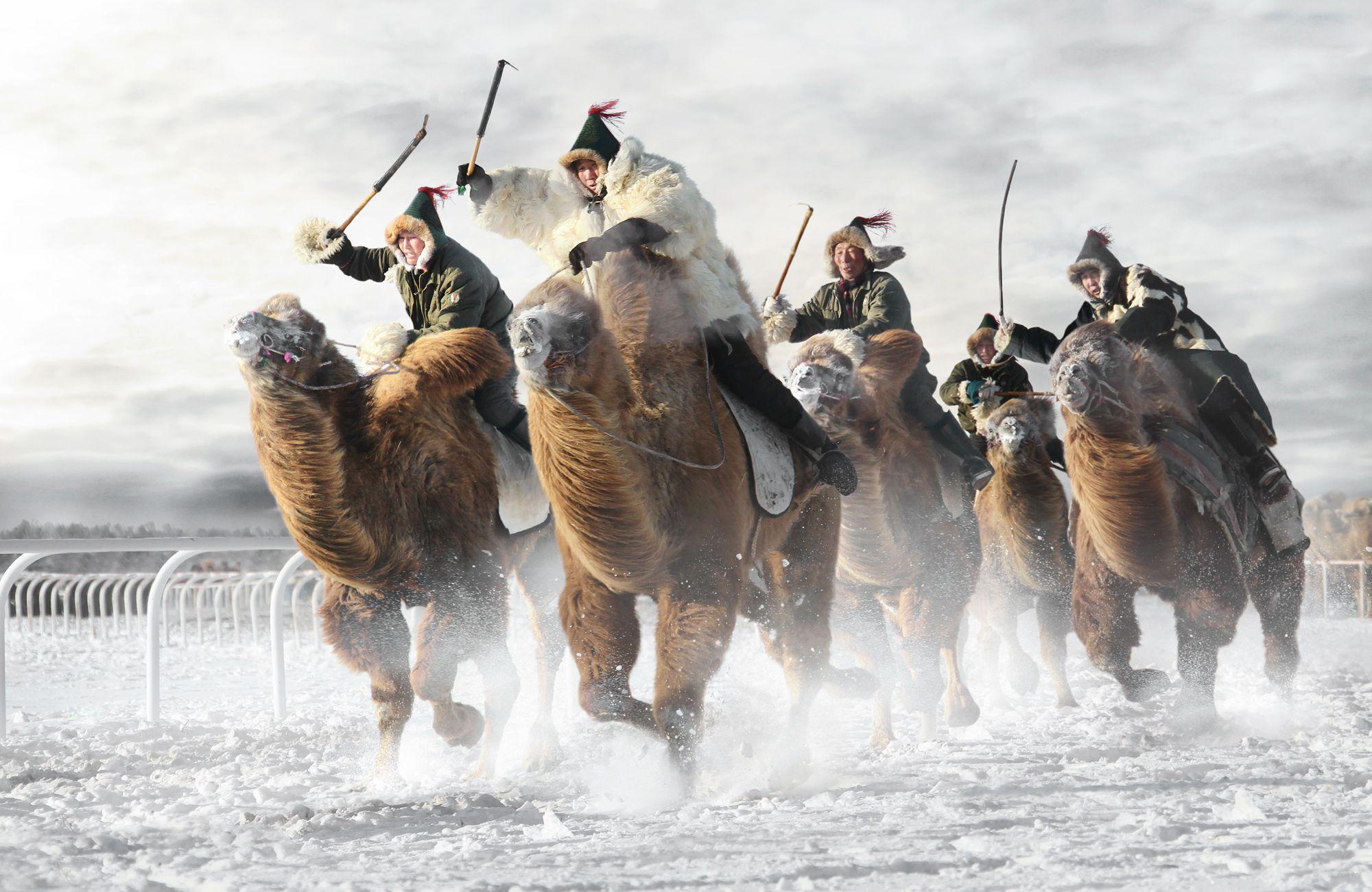 Монголия картинки прикольные