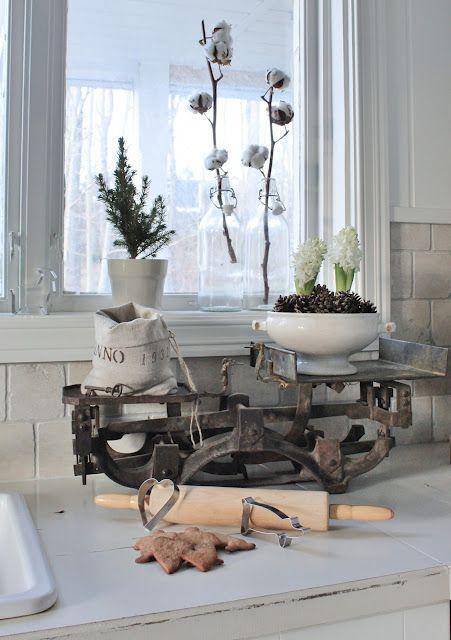 .cucina