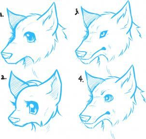 How To Draw Anime Wolves Anime Wolves Step By Step Anime Animals Anime Draw Japanese Anime Draw Manga Free Onl Animal Drawings Anime Wolf Anime Drawings