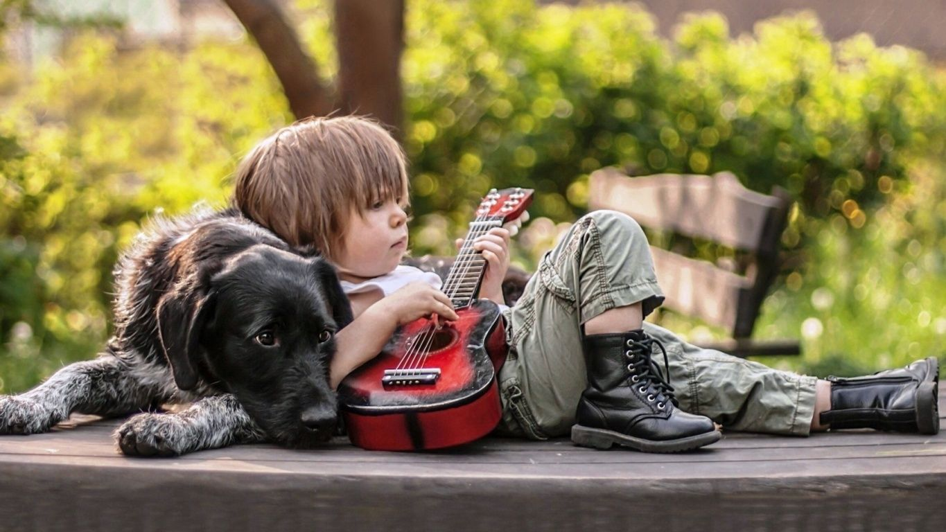 Cute Boy Playing Guitar With Dog Hd Wallpaper Hd Wallpapers Quality Hd Desktop Wallpapers Dogs Cute Wallpapers Animals For Kids