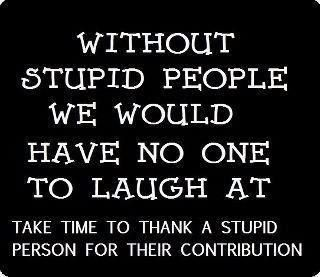 Zaynette22 On Twitter Stupid People Stupid Person Funny Quotes