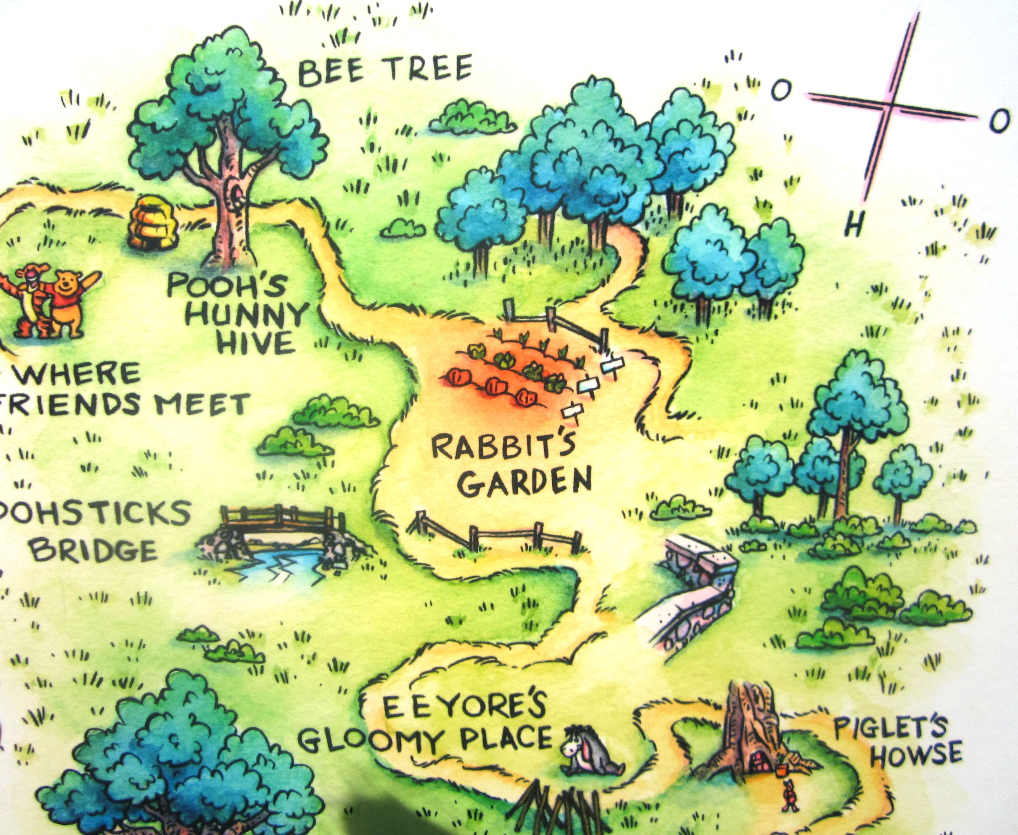 the hundred acre woods from the winnie the pooh book s is a