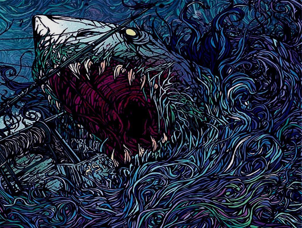 Download Sharks Parkway Drive Wallpaper 1019x768 Full HD