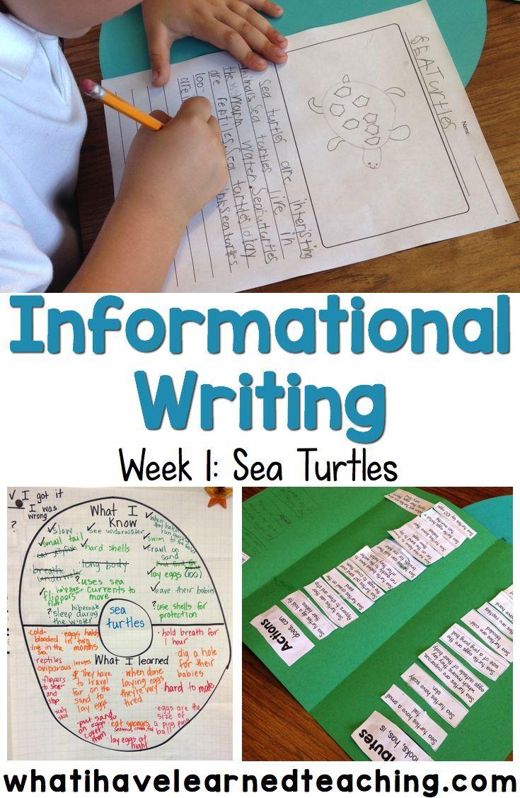 Set the Routine – Informational Writing: Week 1 – Sea Turtles ...