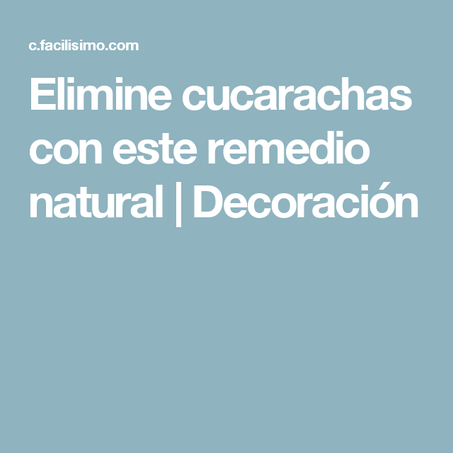Elimine cucarachas con este remedio natural | Decoración