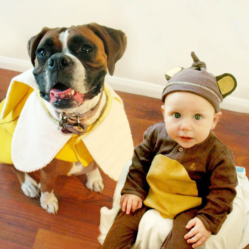 adorable boy and his dog coordinate halloween costumes every year baby monkey and his banana dog kidfolio the app for parents kidfolio