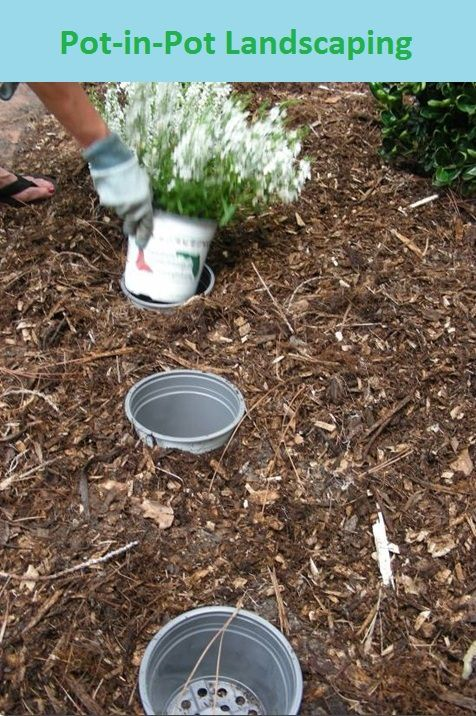 Gardening Tips Tricks Pot In Pot Landscaping