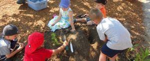 CANADA - Toyota Evergreen Learning Grounds School Ground Greening Grants   Evergreen