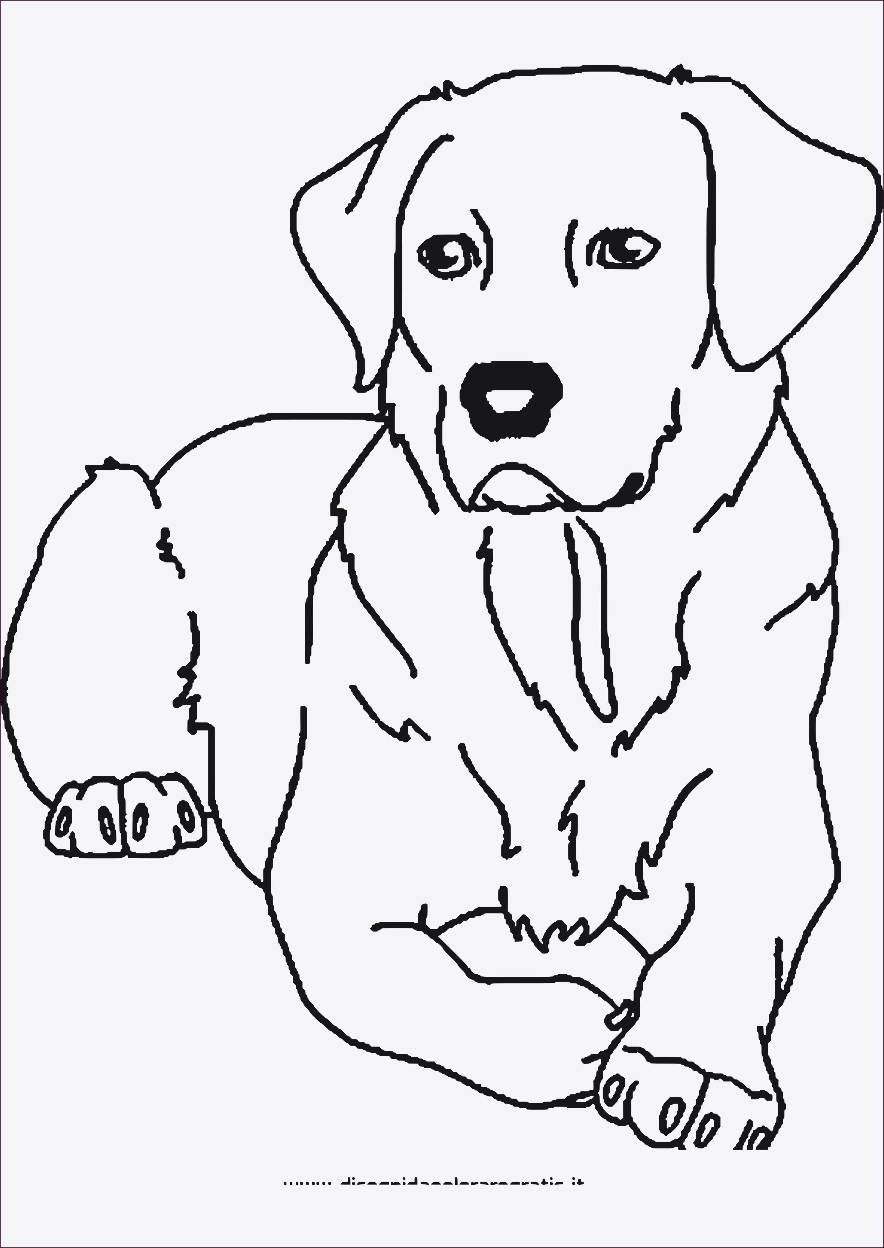 Ausmalbilder Tiere Gratis Zum Ausdrucken  Ausmalbilder tiere