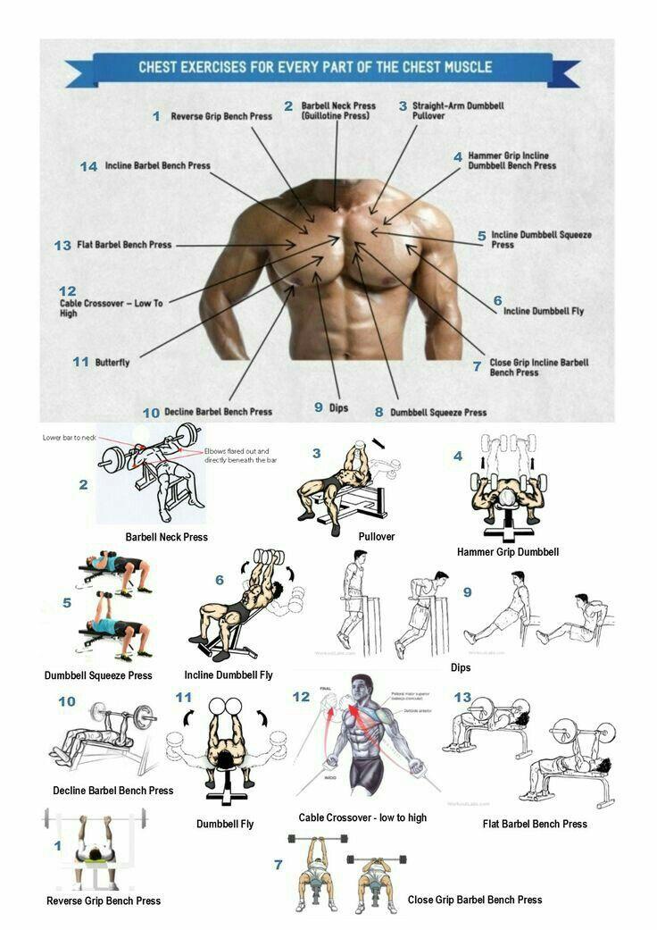 pectorales #rubenentrenador.com | Workout exercises | Pinterest ...