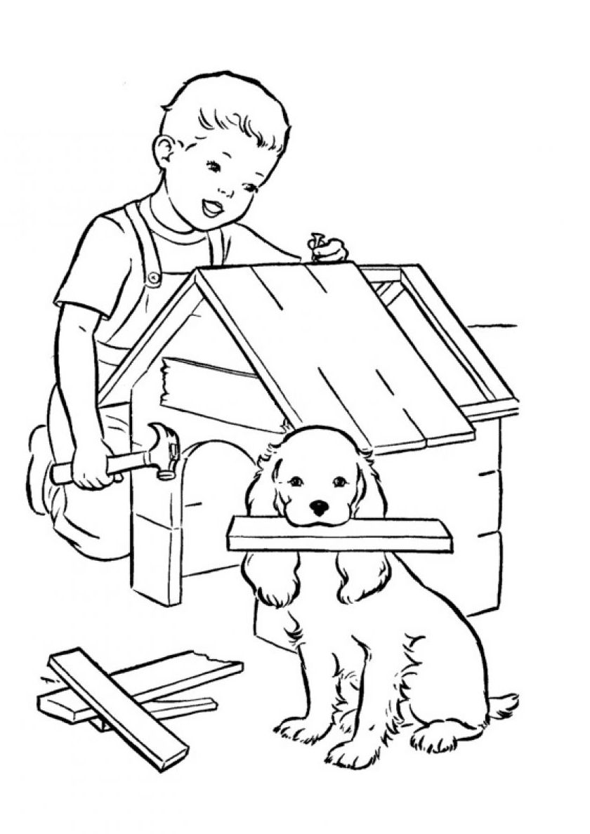 Bolognese and its Young Owner Building Dog House - high ...