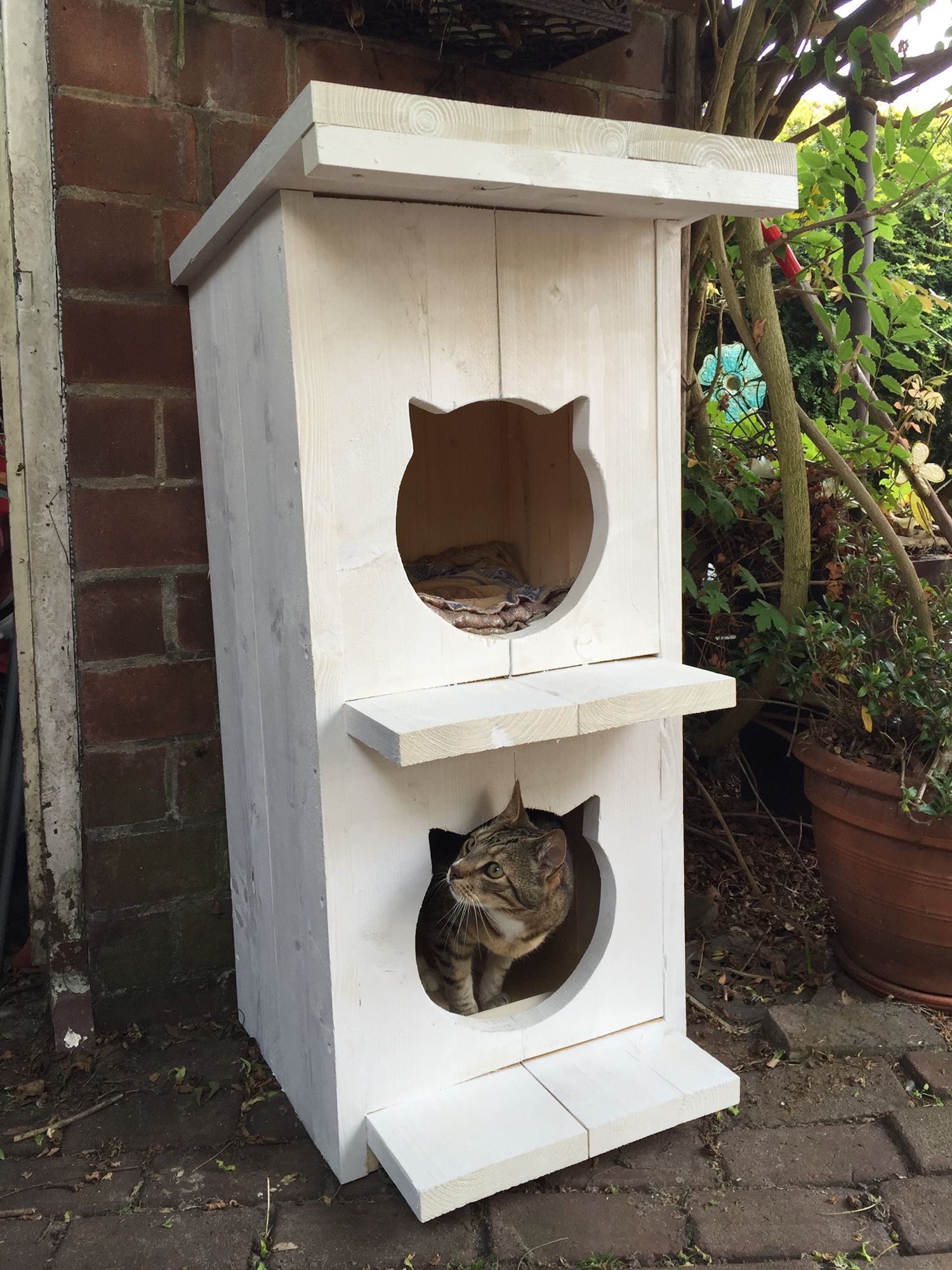 Superleuk Tuinhuis Voor De Katten Van Steigerhout Sloophout Gemaakt Door Atelier Klinkhamer In Maarssenbroe Outdoor Cat House Outside Cat House Cat House Diy
