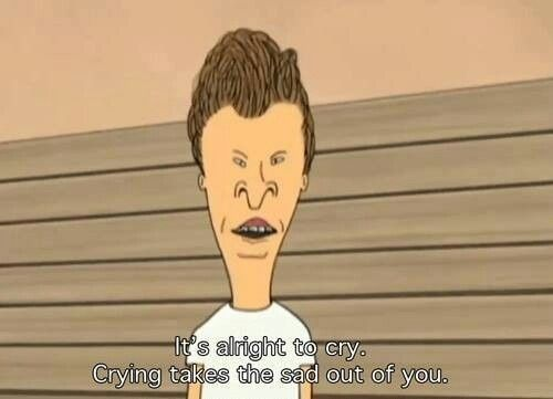 Beavis and butthead quote | Art | Best funny pictures, Beavis