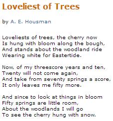 loveliest of trees lyrics