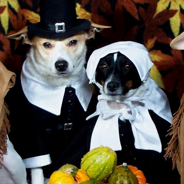 Adorable thanksgiving pics!!!!!
