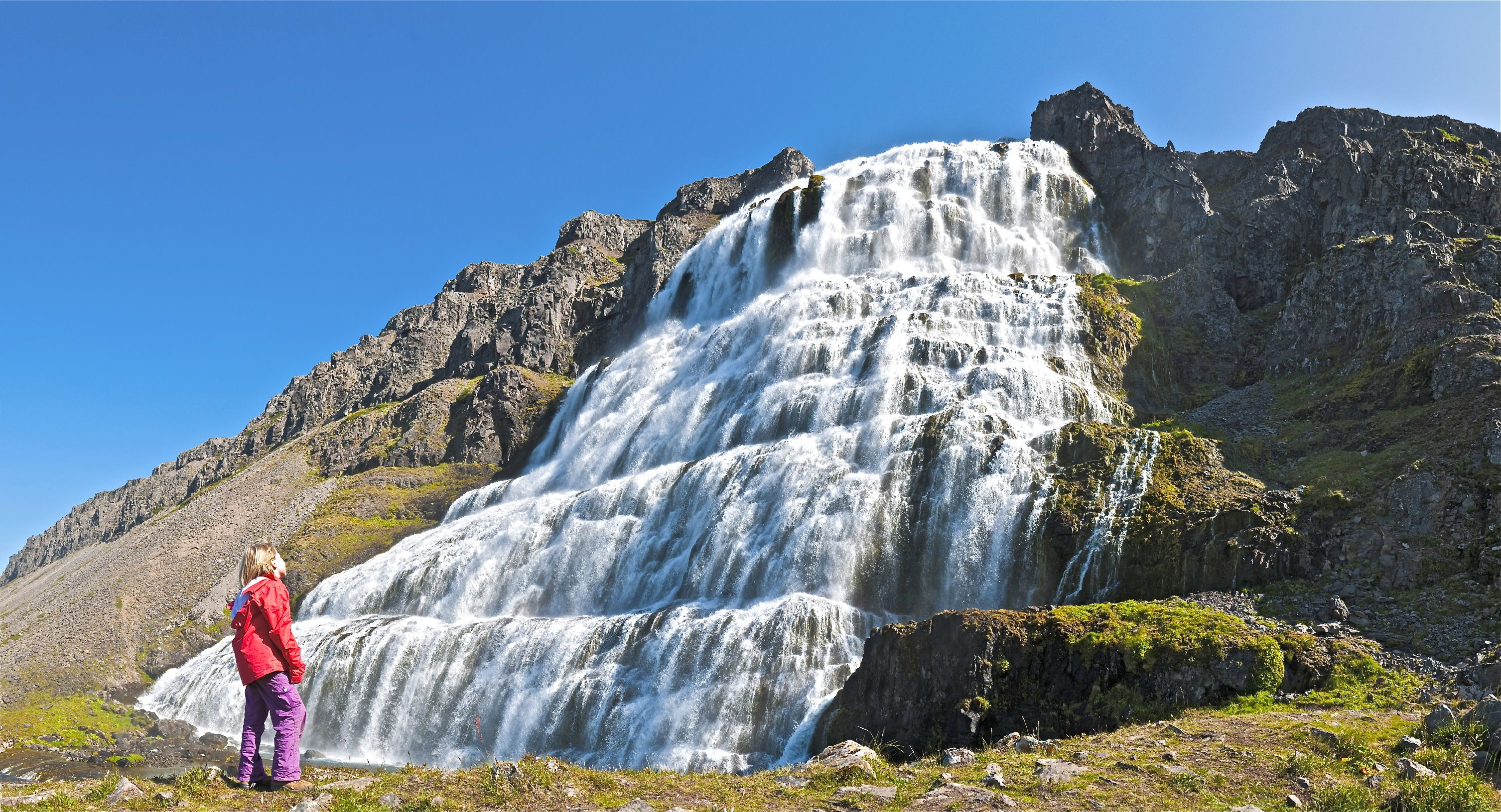 The Wild Westfjords Of Iceland Guide To