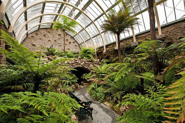 Benmore Younger Botanic Garden Argyll Scotland The Restored Victorian Fernery Iii Jardin D Hiver Abri De Jardin Et Jardins