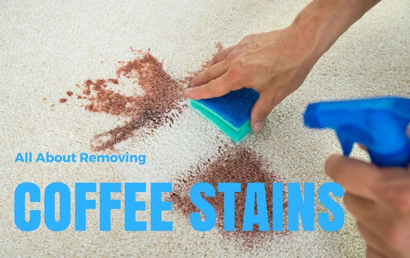 Find out how to remove coffee stains from common household