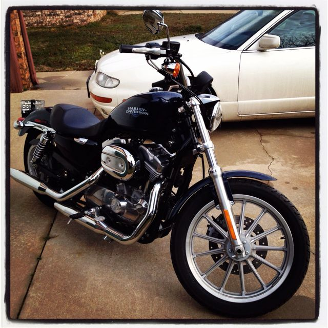 A 2008 While Mine S Black Cherry Red 2007 Harley Davidson Sportster Xl883l Harley Davidson Sportster Harley Davidson 2008 Harley Davidson