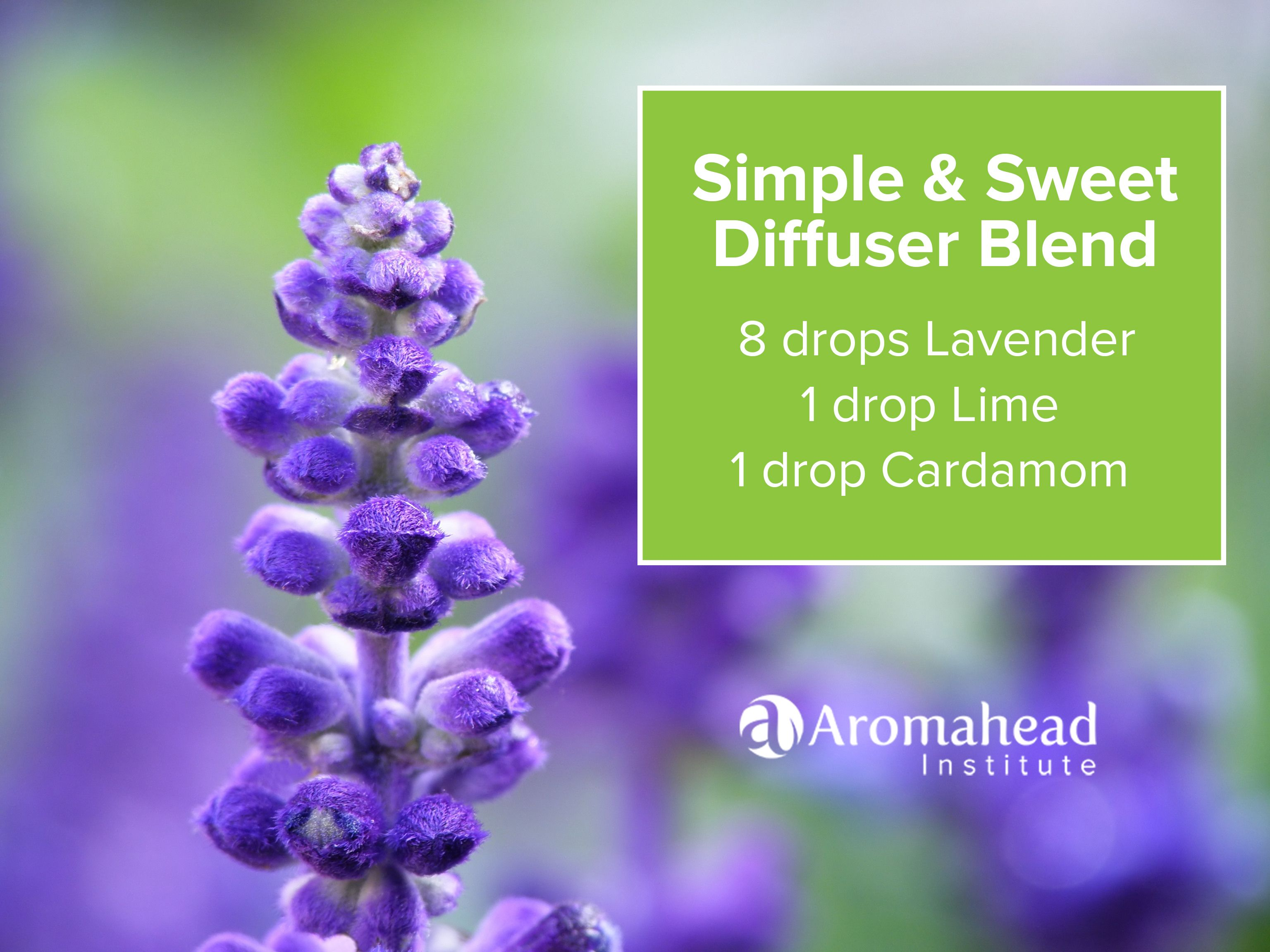 Pin By Aromahead Institute Study Aromatherapy On Diffusing
