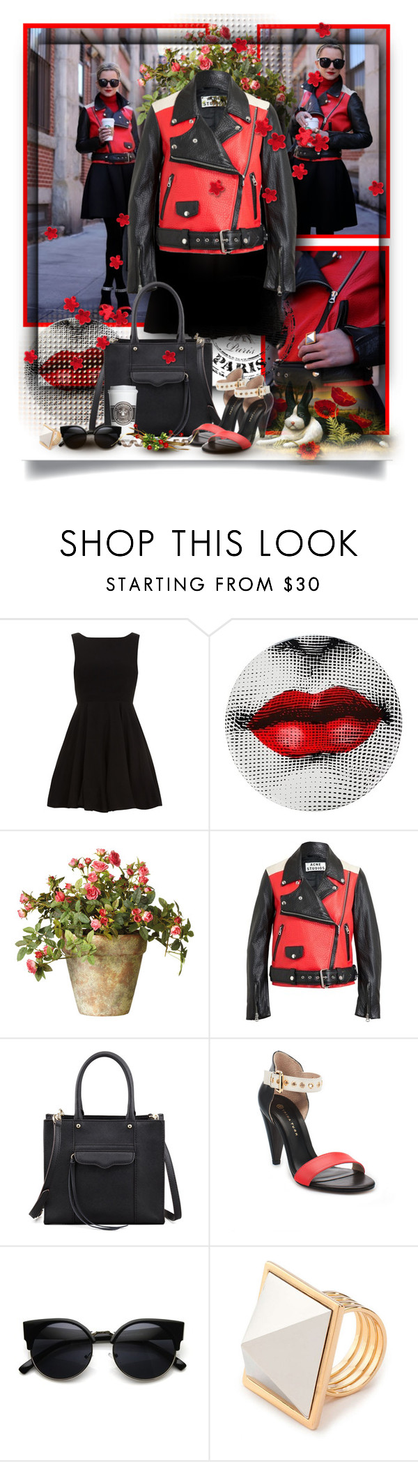 """""""Hot & Dangerous"""" by noralyn ❤ liked on Polyvore featuring Alice & You, Fornasetti, OKA, Acne Studios and Rebecca Minkoff"""