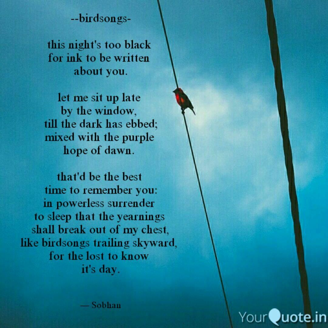 End. PC Pinterest. tie YqBaba YoPoWriMo end musings
